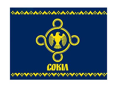 http://vgo-sokil.org.ua/